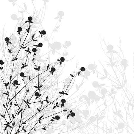 bush of wild flowers in the gray scale
