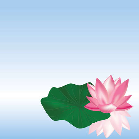 pink lotus with leaf on the water Vector