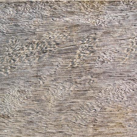 A natural grey wood texture. Stock Photo
