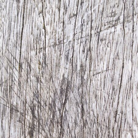 A natural grey wood texture. Stock Photo