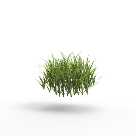This is a 3d illustration of grass