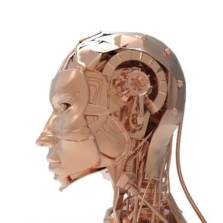 virtual reality simulator: Cyborgirl,This is a vision of women in futur