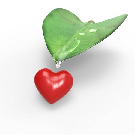 Vegtalove,About love and nature