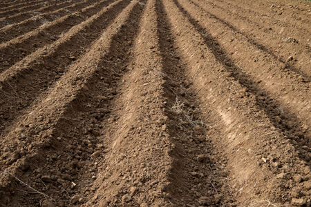 grooves: Soil Grooves Farming Earth soil grooves over field for crop planting on rural countryside farm lands. Stock Photo