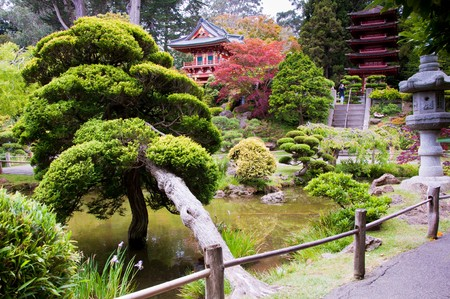 The Japanese Tea Garden in the Golden Gate Park, San Francisco. Stock Photo - 7368367