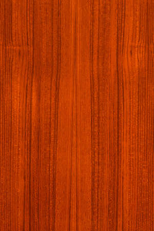 Wood texture background for design photo