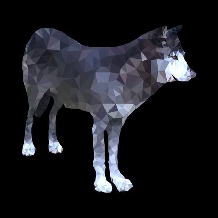 instinct: polygonal vector illustration of wild wolf isolated