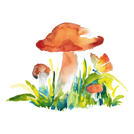 boletus: watercolor colored illustration of orange-cap boletus mushrooms with butterfly