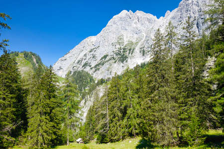 Landscape with rocky mountains and green forest in the Gesäuse National Park in Austria