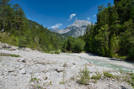 On the banks of the Johnsbach in the Gesäuse National Park in Austria Standard-Bild