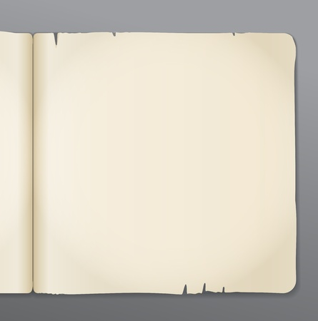 open notebook: Old opened book pages background. Ready for the text