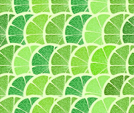 Citrus seamless background. Lime Vector