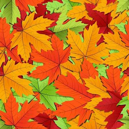 Maple leaves of different colors seamless background  Vector