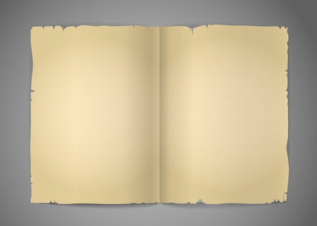 wright: Blank cracked book pages vector template for a content