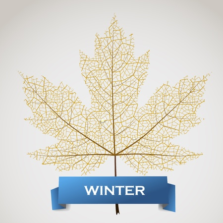 Ahorn mit Winter Banner verlassen