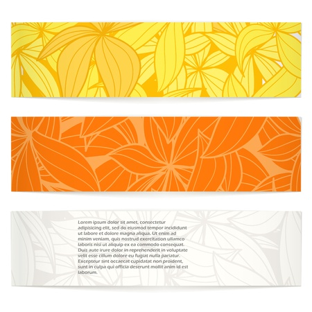 pattern of geometric shapes: Set of floral information banners. Ready for a text