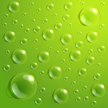 humid: Background of drops on green