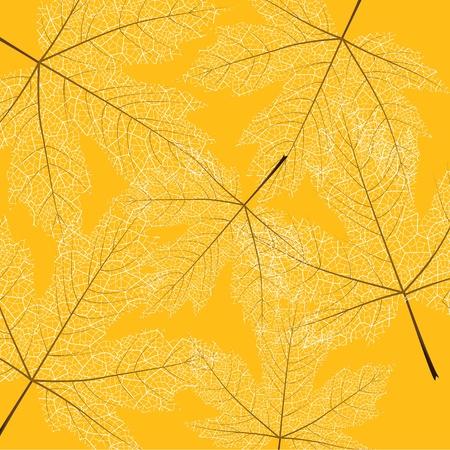 Ahornblätter Hintergrund Vektorgrafik