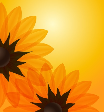 Sunflowers orange background Vector