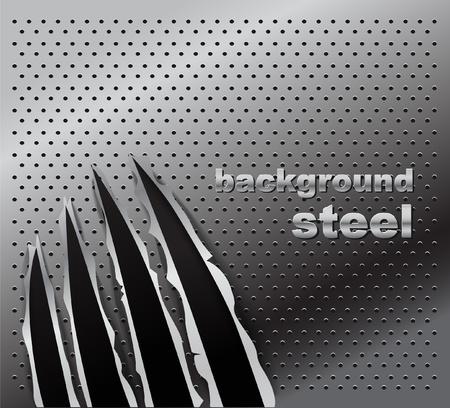 cartone strappato: Tracce di una zampa di animale su fondo in acciaio. Pronti per un testo.