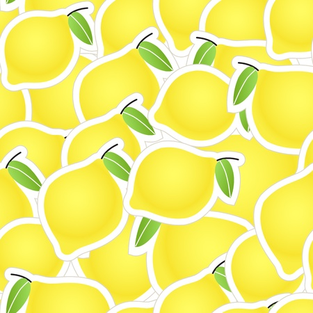 Yellow citrus seamless background Vector