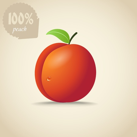 the peach: Cute orange peach illustration