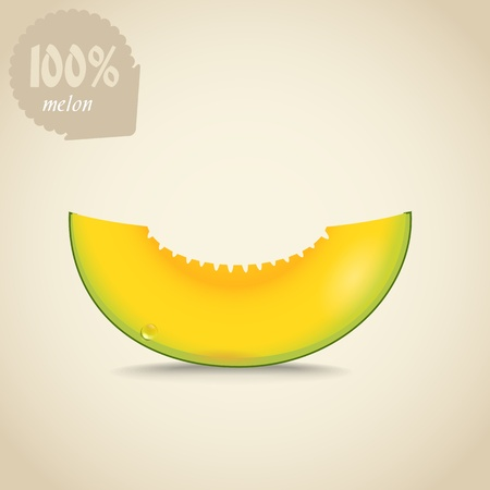Cute fresh yellow melon illustration Vector