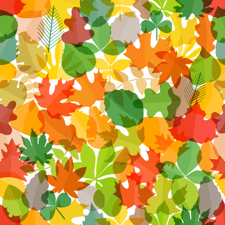 lush foliage: Different color autumn leaves seamless pattern