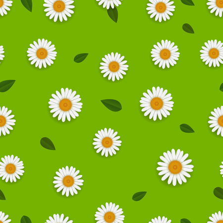 Spring seamless pattern with white camomiles Illustration