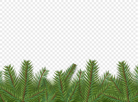 Christmas vector decorations. Border with evergreen pine branches isolated on  transparent background