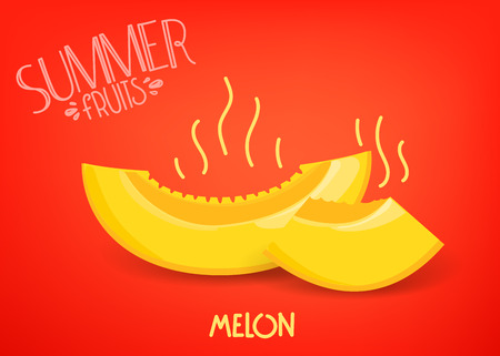 Summer fruits. Melon on red background