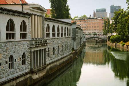 ljubljanica river, slovenia Stock Photo - 2871350
