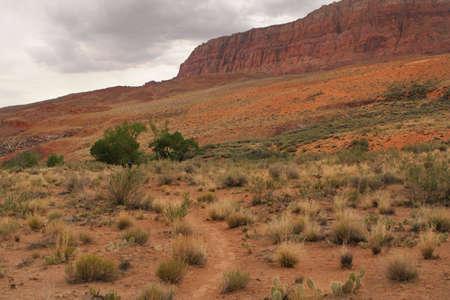 cloudy desert landscape