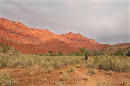 lone hiker in the desert
