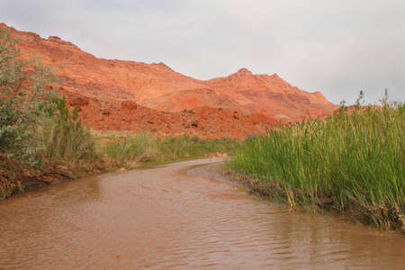 brown river in the desert Stock Photo