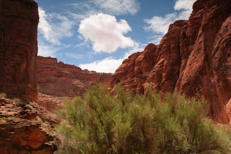 blue skies over red sandstone canyons in the desert of southern Utah