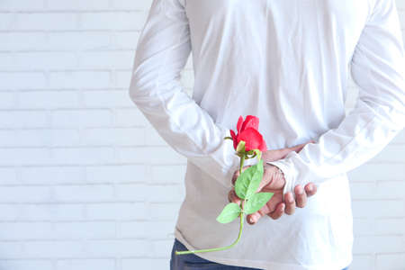 unrecognized man hand holding rose flower on white background