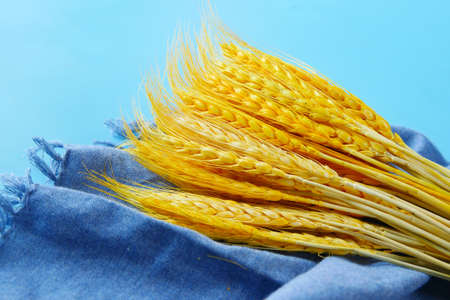 detail shot of wheat spikelets on table