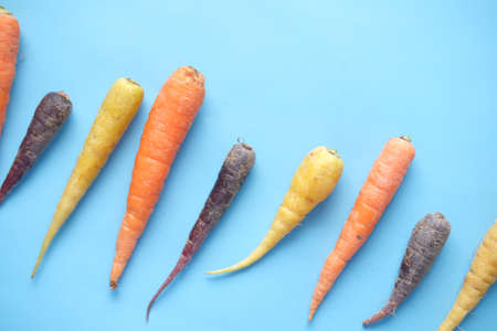 mixed colorful carrot on blue background Standard-Bild