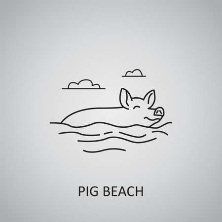 Pig beach icon on gray background. Bahamas, Pig island. Line icon