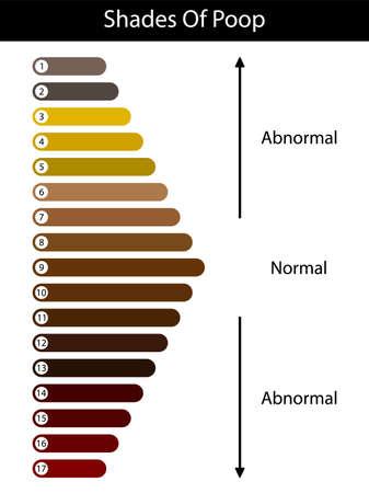 Shades color of poop. Human feces color. Healthy concept. Normal and abnormal value scale. Vector Vector Illustratie