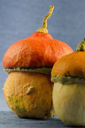Decorative Halloween pumpkins on the table, health food