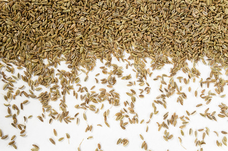 finocchio: Dried Fennel Seeds, isolated on white background Archivio Fotografico