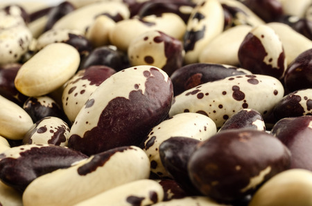haricot: White haricot beans isolated on white background