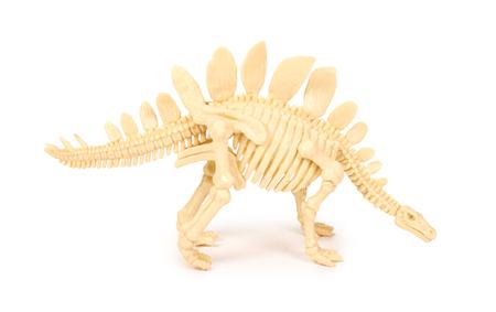 Plastic Toy Animal Dinosaur Skeleton isolated on white background.