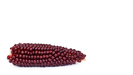burgundy indian Corn kernels detail isolated on white background. copy space, template. 스톡 콘텐츠
