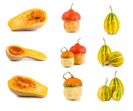 set of different Crude festive pumpkin isolated on white background, health food. Stock Photo