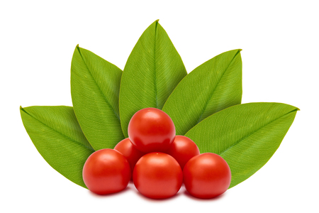 Fresh organic red tomato on the background of green leaves. Isolated on white. concept of natural origin.