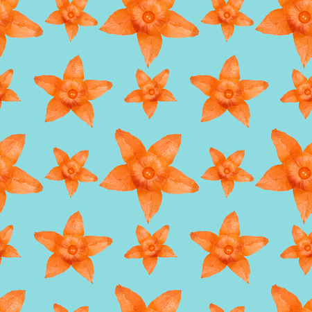 Close up orange physalis flower seamless pattern background.