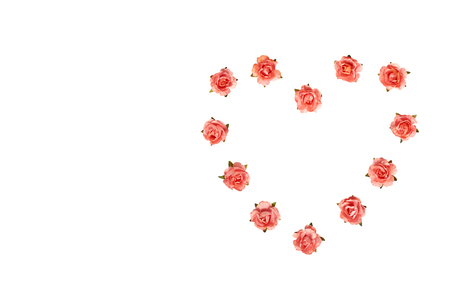 Blooming pink flowers, decorative plant, romantic mood. Isolated on white background. Copy space template